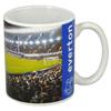 Everton Stadium mug